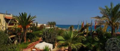 CACTUS BEACH 4 *