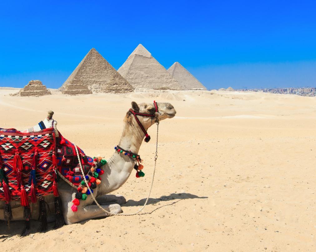Почивка Комбинирана програма в ЕГИПЕТ 2020 - 1 нощувка в Кайро и 6 нощувки в Ел Гуна   РАННИ ЗАПИСВАНИЯ