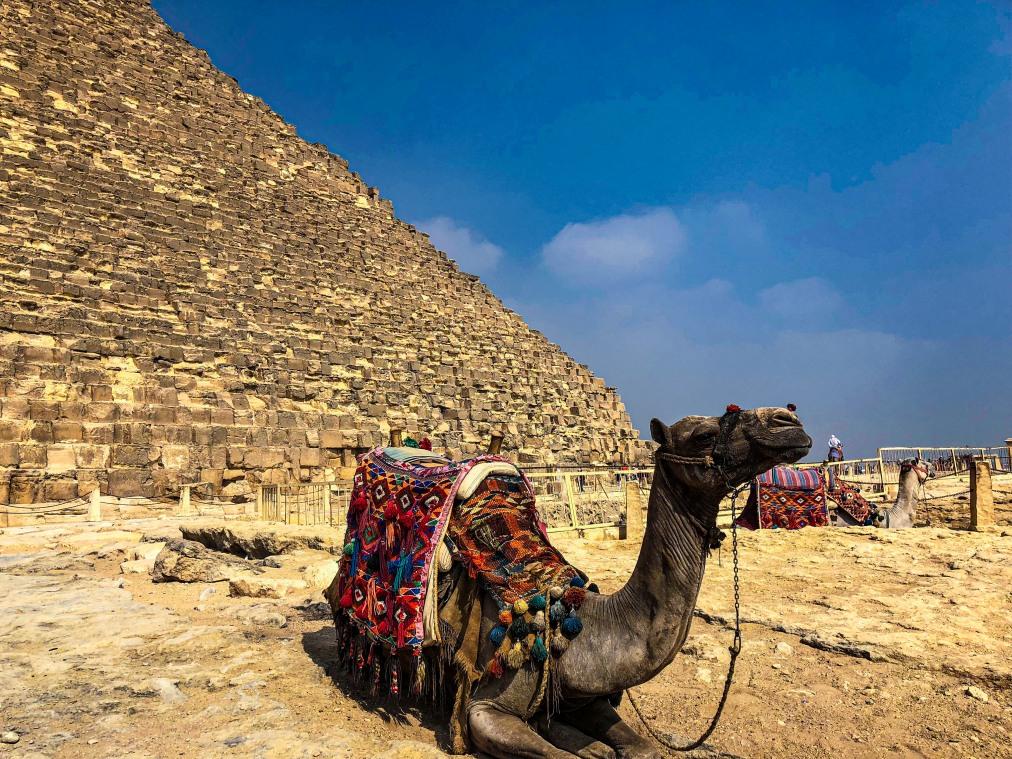 Почивка Комбинирана програма в ЕГИПЕТ 2020 - 1 нощувка в Кайро и 6 нощувки в Сома Бей