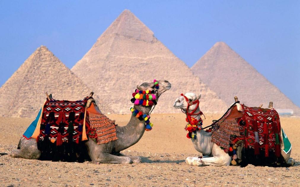 Почивка Комбинирана програма в ЕГИПЕТ 2020 - 1 нощувка в Кайро и 6 нощувки в Сафага   РАННИ ЗАПИСВАНИЯ