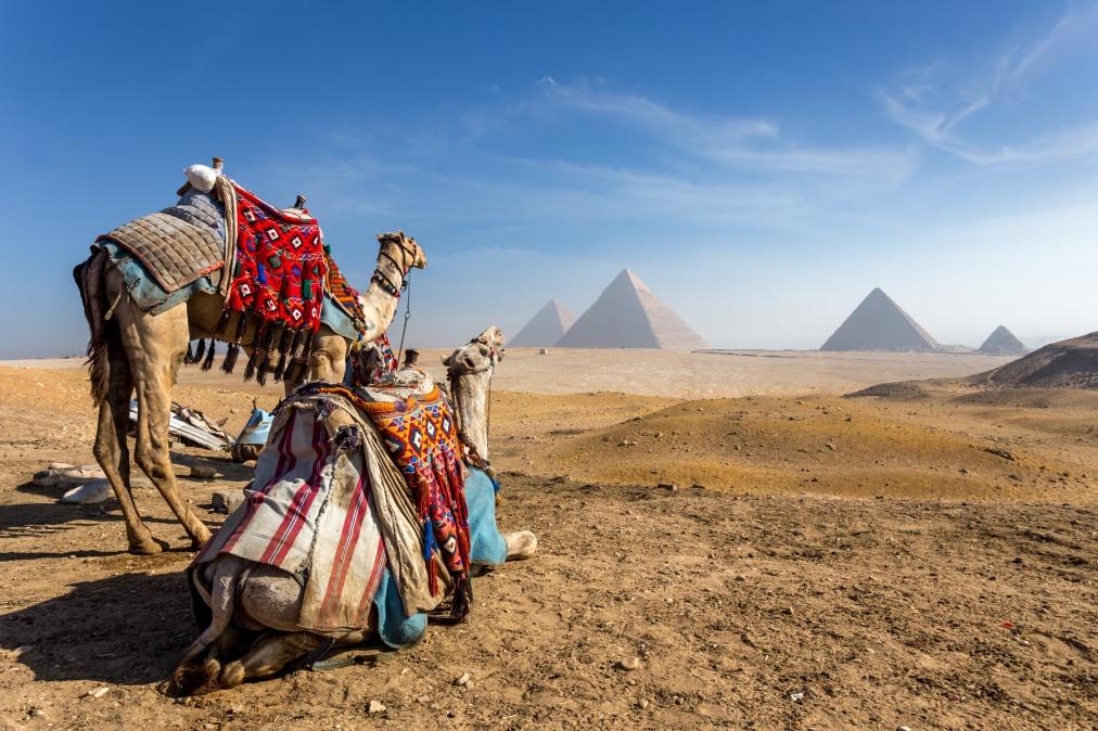 Почивка Комбинирана програма в ЕГИПЕТ 2020 - 6 нощувки в Сал Хашиш и 1 нощувка в Кайро